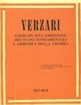 Verzari_TPT_Exercises-detail